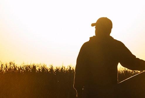 Repuestos para cosechadoras de granos