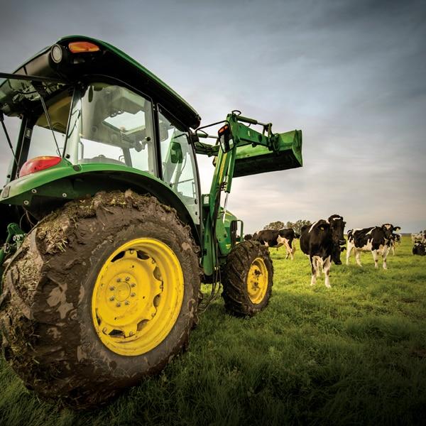 Solución de ganadería y forraje